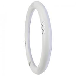 Luminaria Aluminio Eco 1 X Tubo LED T8 120Cm